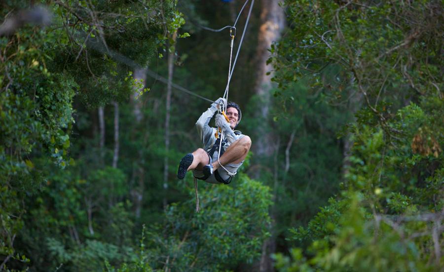 Garden Route Activities - zipline canopy tour